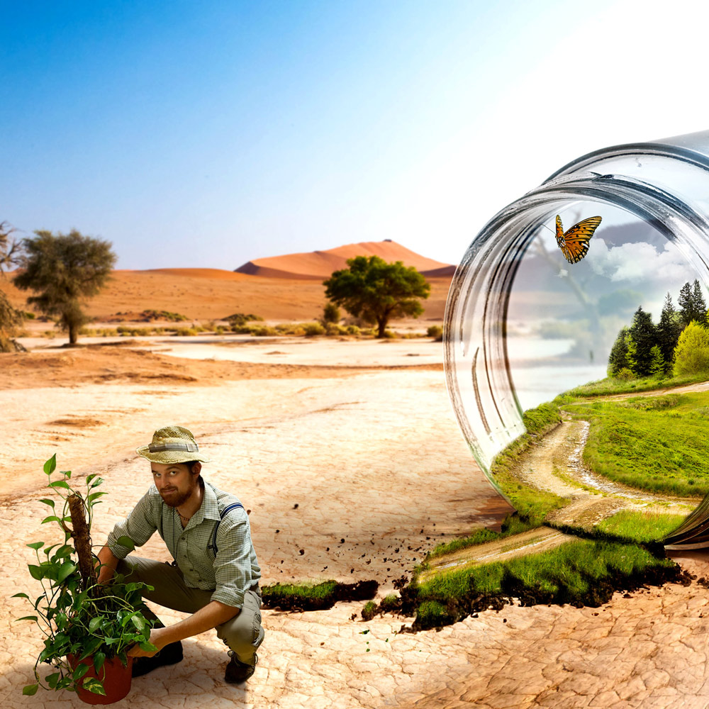 Glas in der Wüste