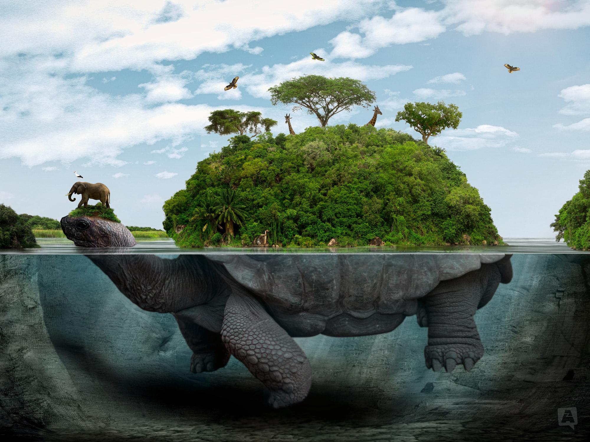 Schildkröteninsel_2000px_web